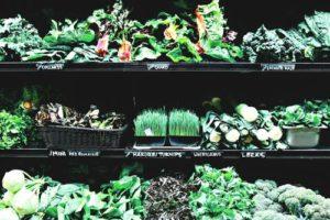 پرورش گیاه و سبزیجات